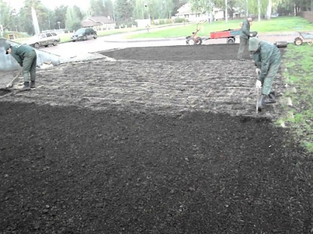 Когда сажать газонную траву, и как добиться её наилучшей всхожести